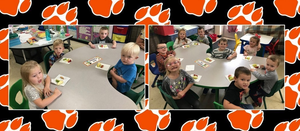 Preschoolers taste testing apples to see which one we like best!